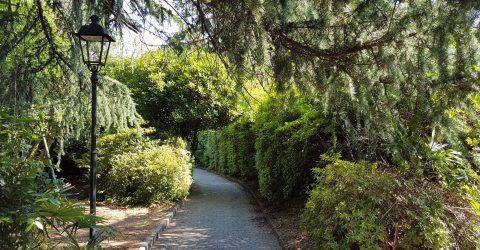 Parco di Villa Fedora